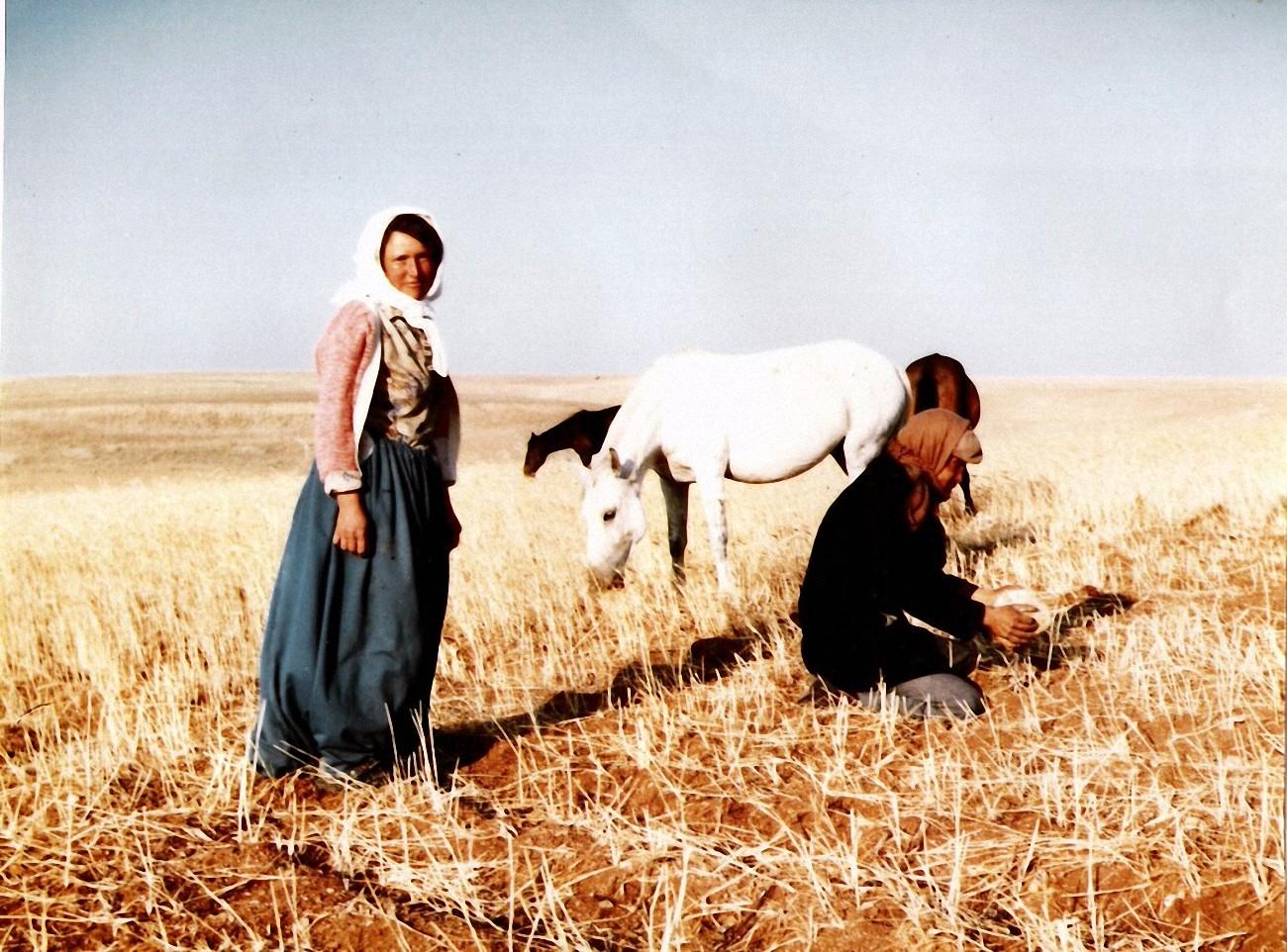 Entwicklung der Kultur in Anatolien